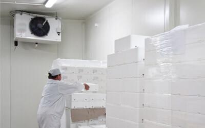 Oberflächenbeschichtung Kühlräume